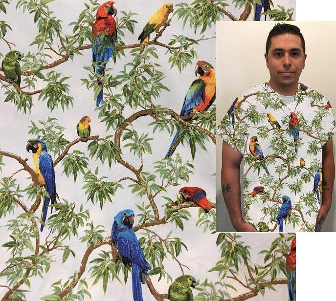 AP062FAB-Q - Over The Rainbow -Parrot  Tropical Print Scrubs