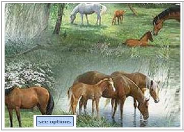 Horse Print Scrub Tops
